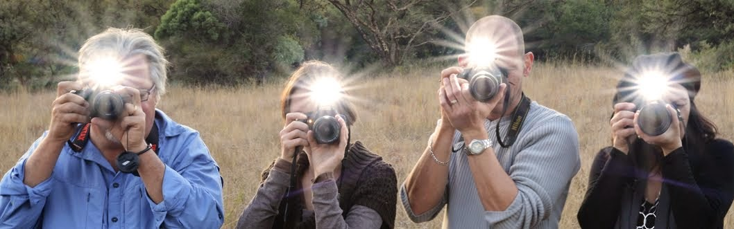 Master Your Camera Photography Courses and Wildlife Photography Workshops