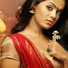 Karthika Nair in Red Saree Photo Set