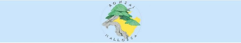 BONSAI MALLORCA