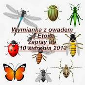 Wymianka z owadem