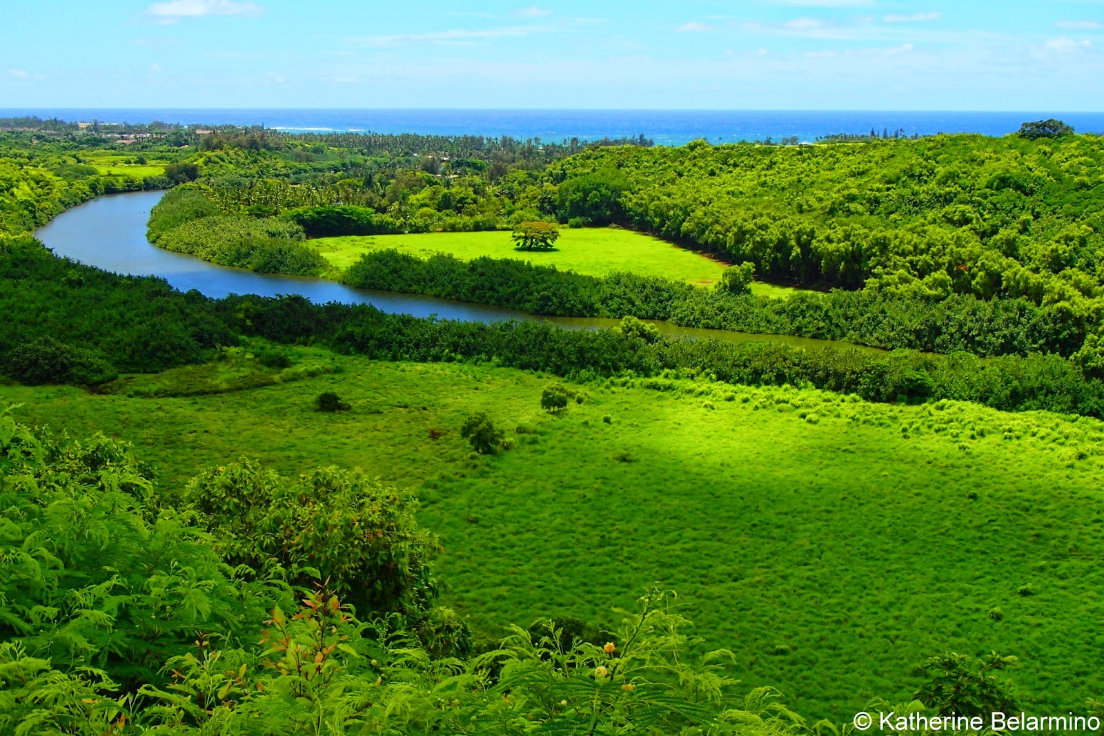 Wailua River Lookout 10 Things to Do in Kauai