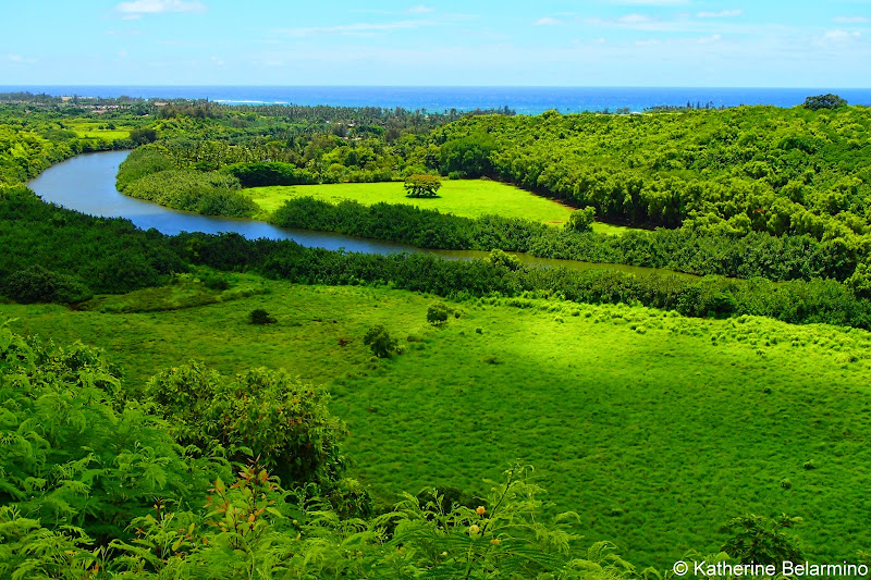 Wailua River Lookout 10 Things to Do in Kauai
