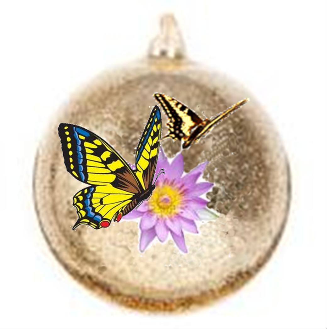 Calendario dell'Avvento : 19 dicembre - Nella semplicità c'è sensibilità  d'animo...