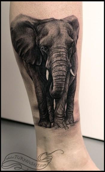 Wild tattoos elephant tattoos for women for Elephant tattoos designs