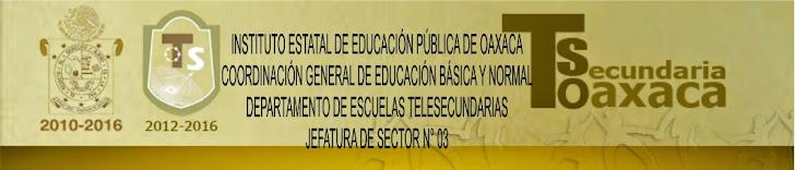 Jefatura de Sector 3 Telesecundaria  Clave 20FTS2001G