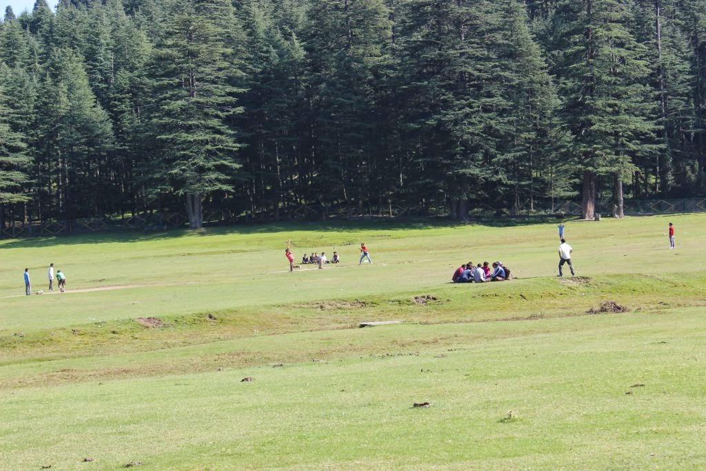 Boys playing cricket