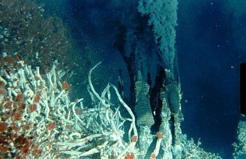 Resultado de imagen de Chimeneas submarinas