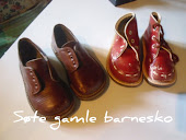 Gamle Barnesko