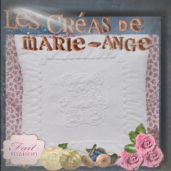 lien pour découvrir les superbes coussins de Marie-Ange