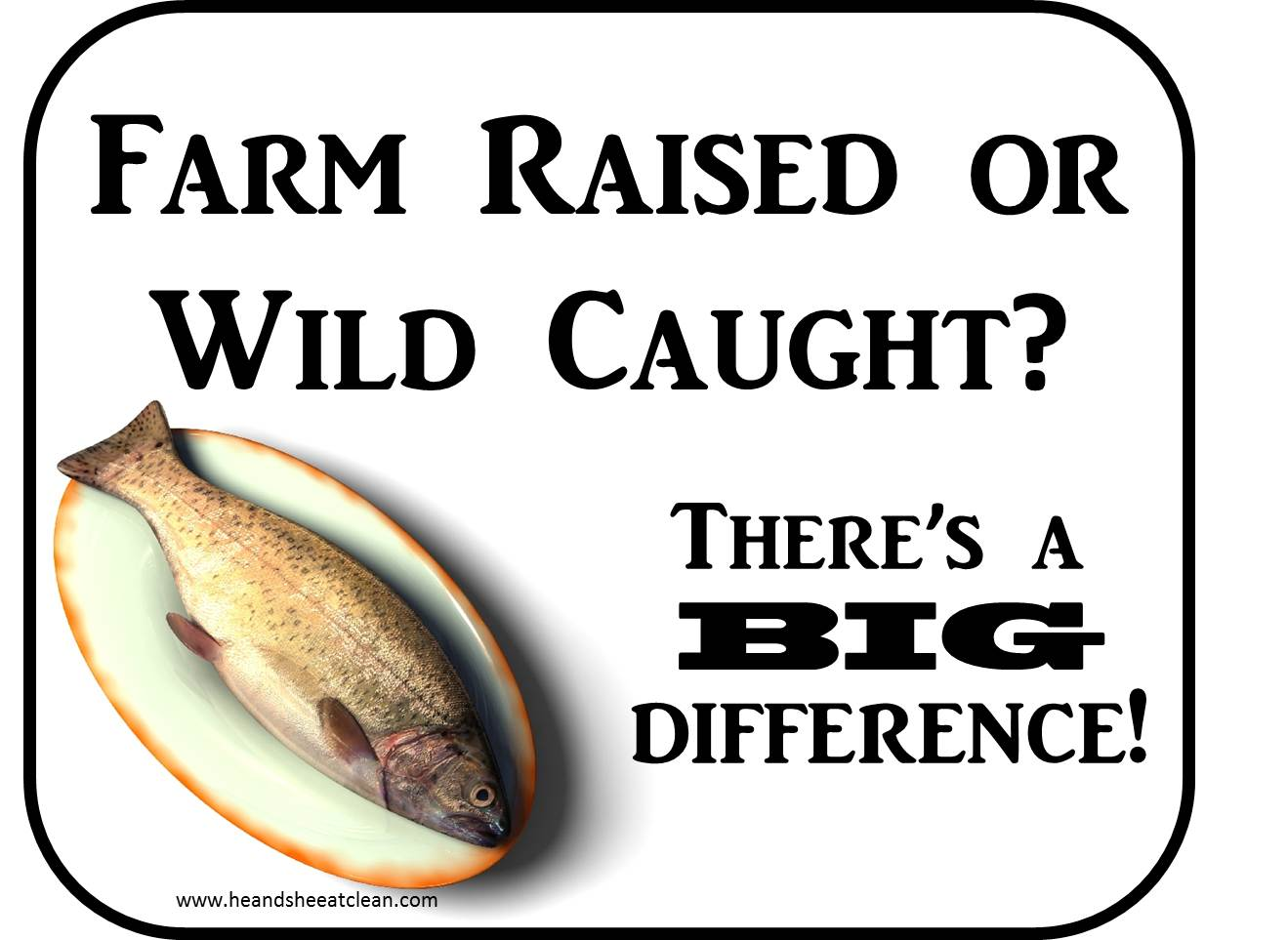 clean eat education farm raised vs wild caught fish