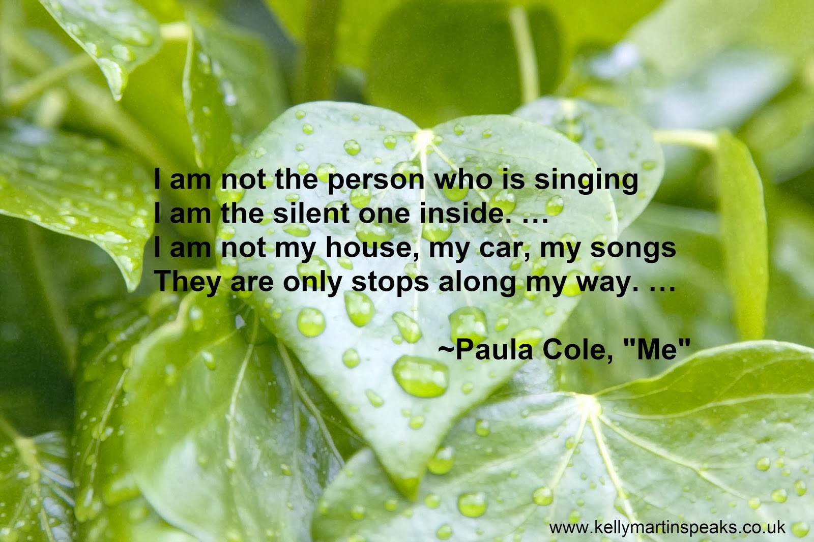 Inspirational quote on authenticity by Paula Cole