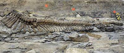 La tumba de los dinosaurios