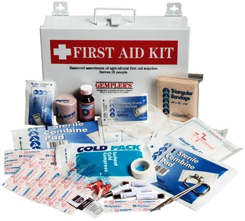 The domestic curator first aid kits the klutz in my kitchen for First aid kits for restaurant kitchens