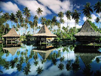 french polynesia the island of love The brando is a luxury resort on french polynesia's beautiful private island of tetiaroa the resort features 35 villas on white-sand beaches.