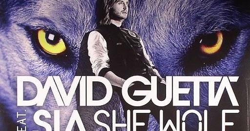 Vinyl Video David Guetta Feat Sia She Wolf Falling To