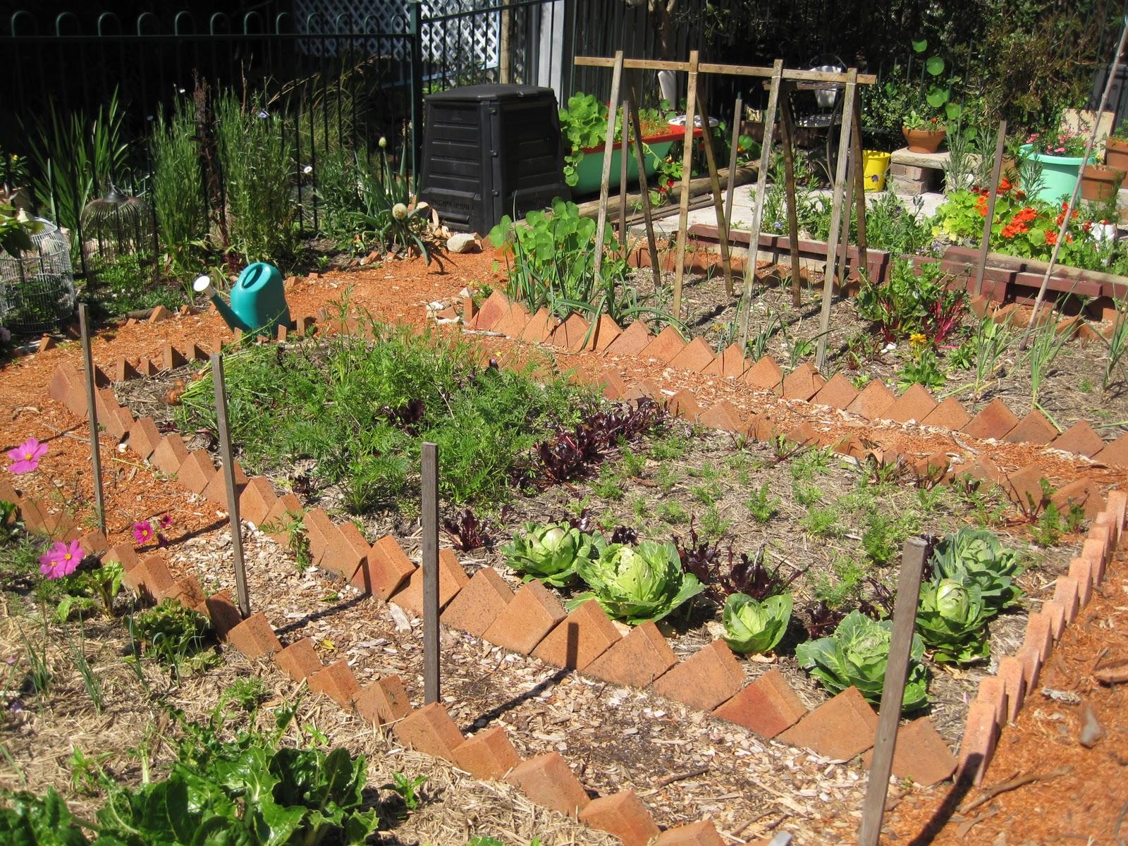 In meg 39 s garden converting a pool into a productive garden for Convert pool into garden