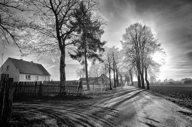 bory tucholskie, grudzień, zima, Lotyń