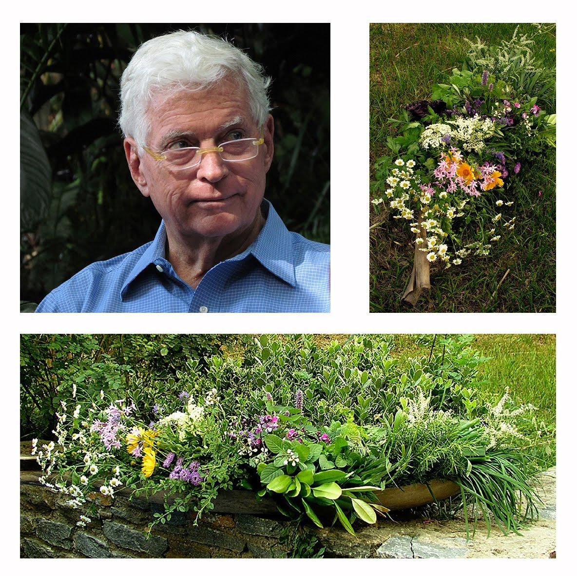 Jardines de gaia jard n bot nico topotepuy en evoluci n for Jardin botanico nocturno 2016