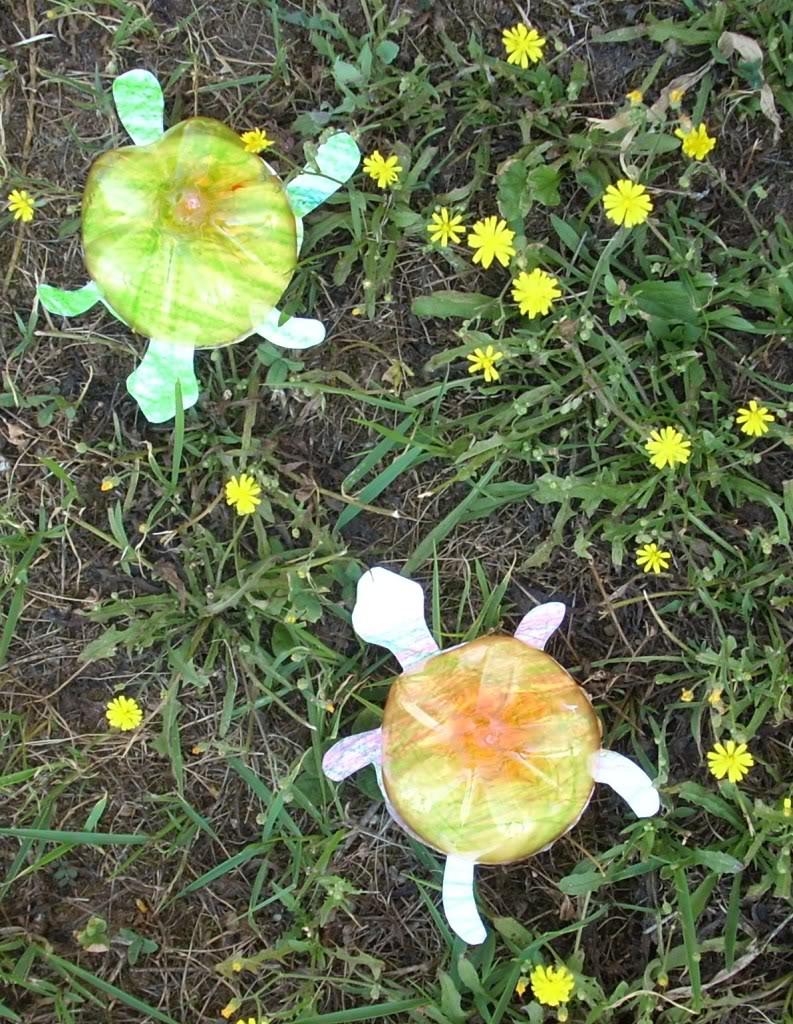 Riciclo creativo bottiglie di plastica lavoretti per bambini for Vasche di plastica per tartarughe