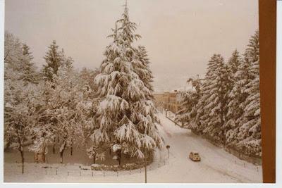 Nevicata del 1985 a Valdagno