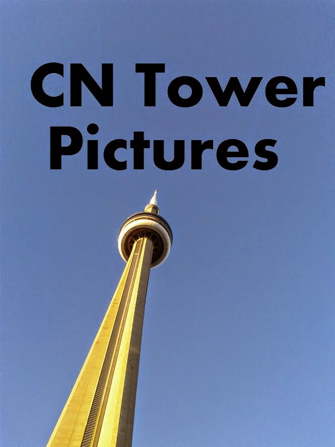 CN Tower Pictures