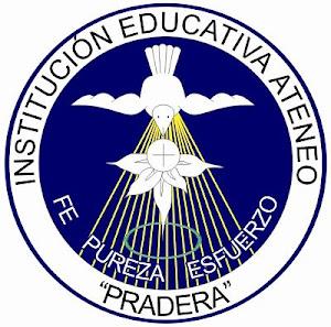 INSTITUCIÓN EDUCATIVA ATENEO