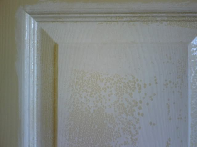 Flooring fanatic september 2015 for Is latex paint oil based