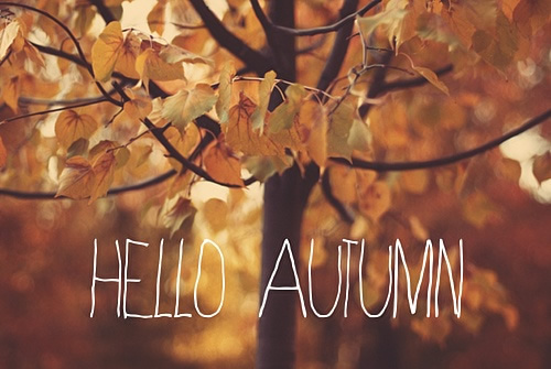 Goodbye Summer And Hello Autumn   Wallpapers