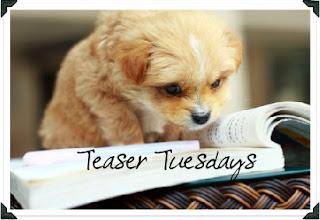 Teaser Tuesday #1
