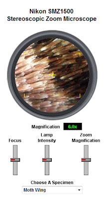 external image 1.png