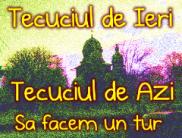 Tecuci - portal