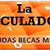 Aclaraciones sobre la calculadora de beca de la página web.