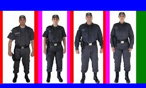 POLICIAMENTO OSTENSIVO GERAL