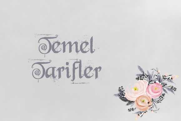 TEMEL TARİFLER