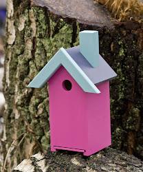 Fine fuglehus i friske farger...