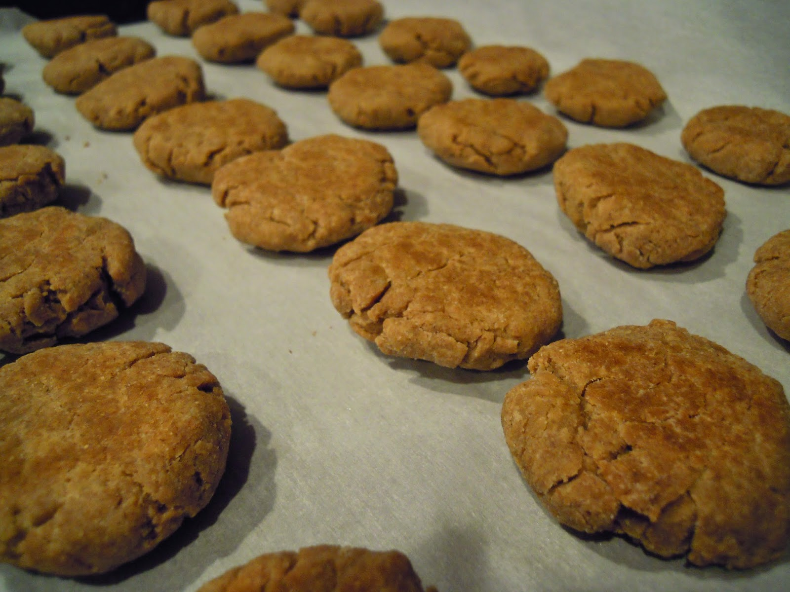 peanut-butter-dog-cookies