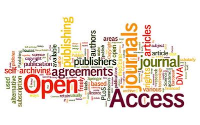 Beyond Open Access - Más allá del Acceso Abierto