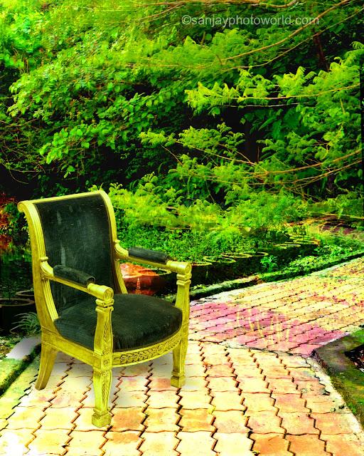 garden Studio Background