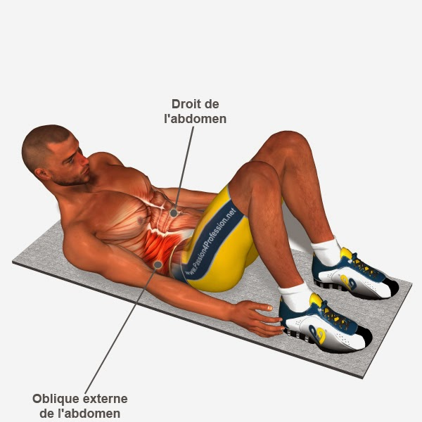 Fitnessmylife Exercices Musculation Obliques Exercices