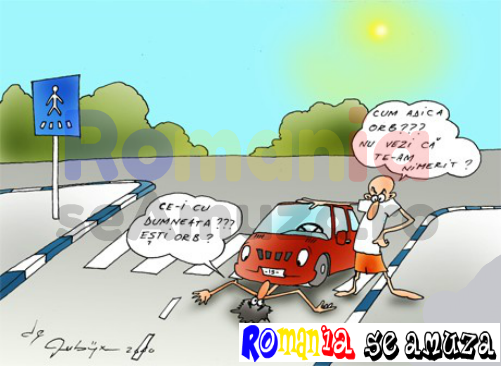 Caricaturi hazlii cu soferi si accidente