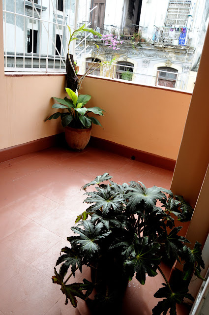 Reserva en Casa Castellón en la Habana Vieja