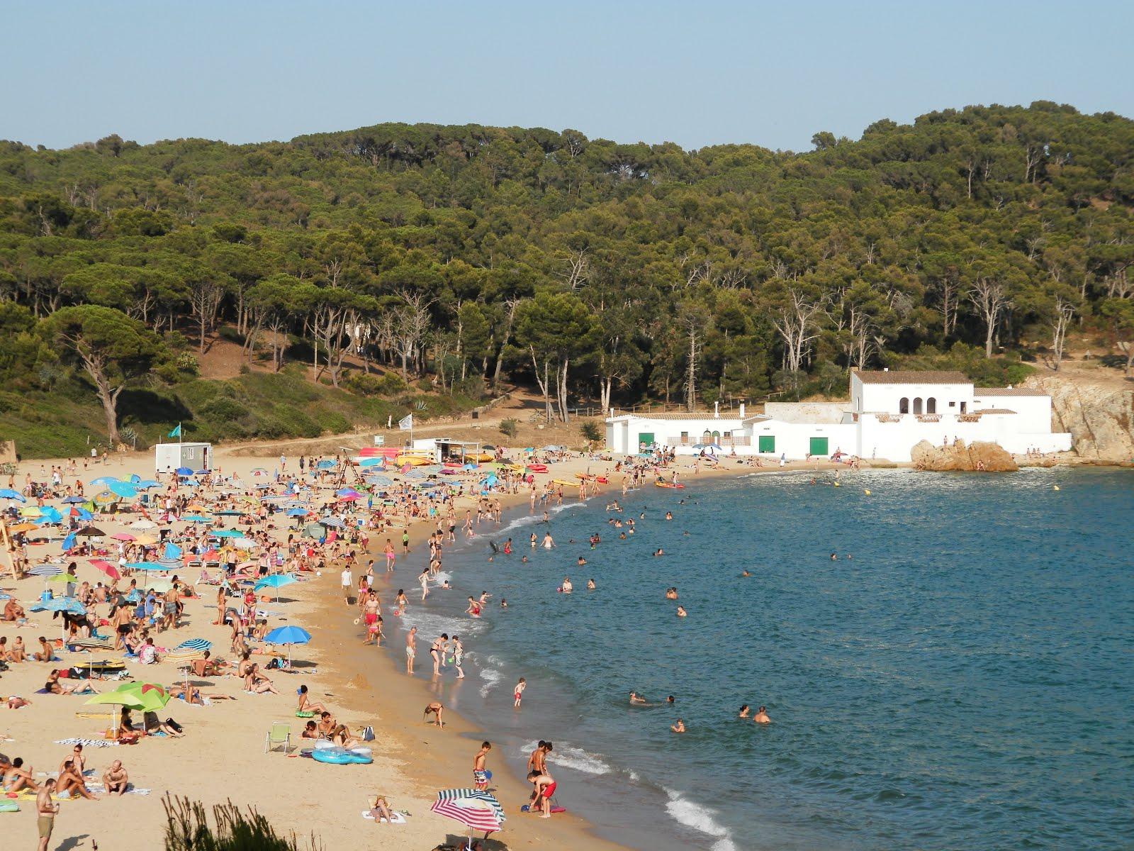 Estat de les platges