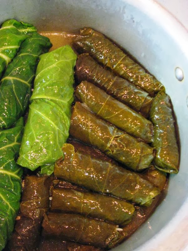 Cooked vine leaves in the pan with a few stuffed cabbage leaves