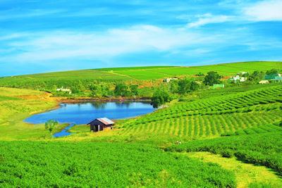 Qué bonito es vivir en el campo junto al lago de agua azul - Paisajes rurales del campo