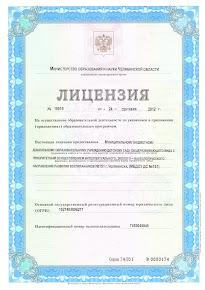 Лицензия МБДОУ ДС №151 г. Челябинска