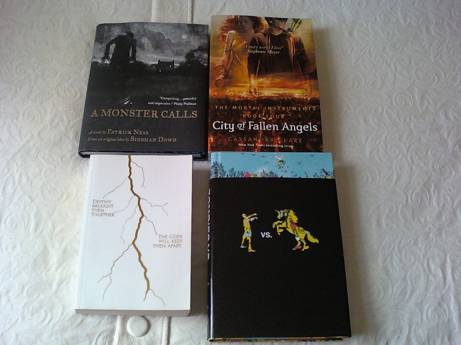 city of fallen angels book report