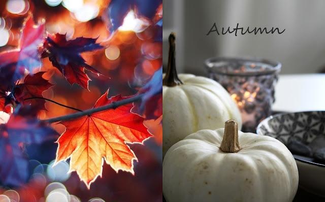 laurentino jesień dynie dekoracje jesienne autumn