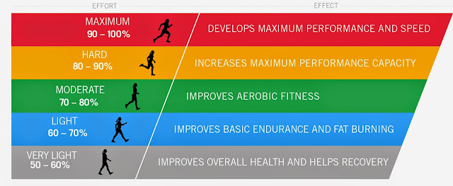 Health Tips Fitness Heart Rate