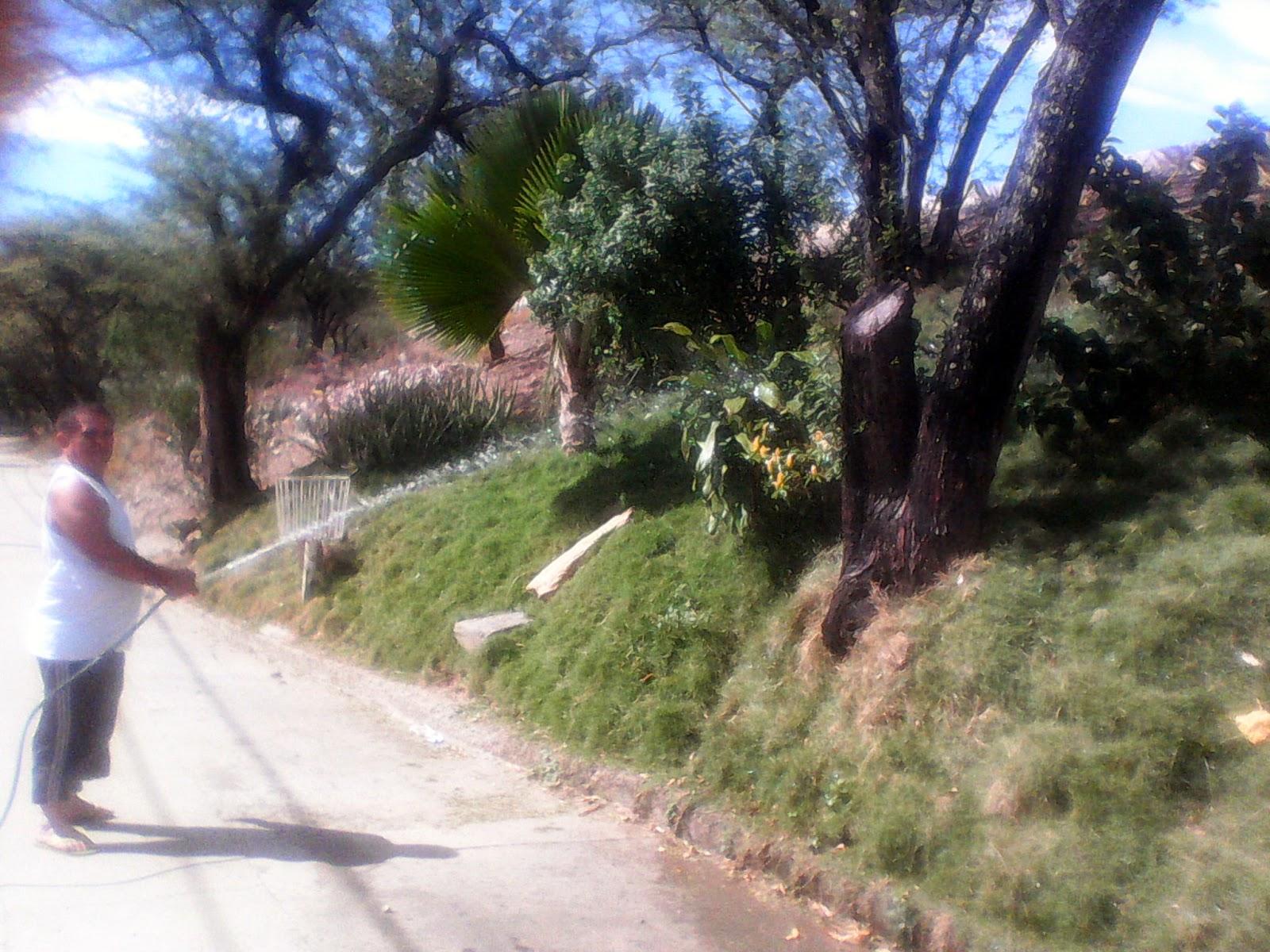 """'José Luis Castellanos es un habitante del sector """"Ecoparque Divino Niño de Chapinero en la ciudadela de Juan Atalaya"""", quien da ejemplo de amor por la naturaleza, el medio ambiente y la vida'"""