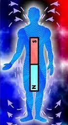 Los efectos del magnetismo en los seres humanos Images+(10)